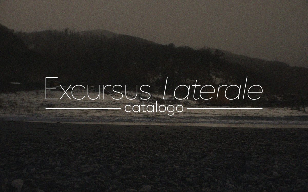 Excursus Laterale: Catalogo. Laterale Film Festiva…